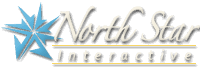 North Star Interactive logo