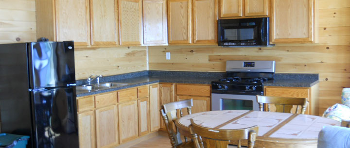 cabin's modern kitchen